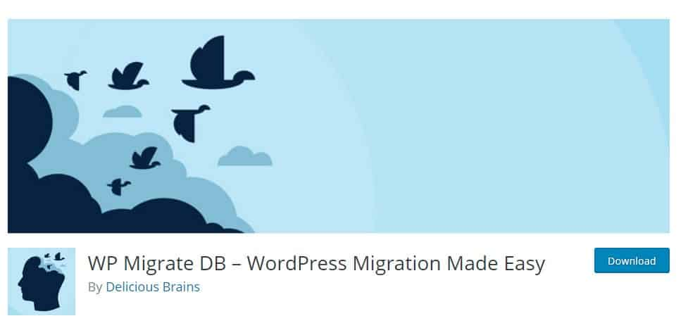 WP Migrate DB